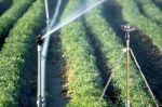 Hệ thống tưới thông mình dành cho nông nghiệp